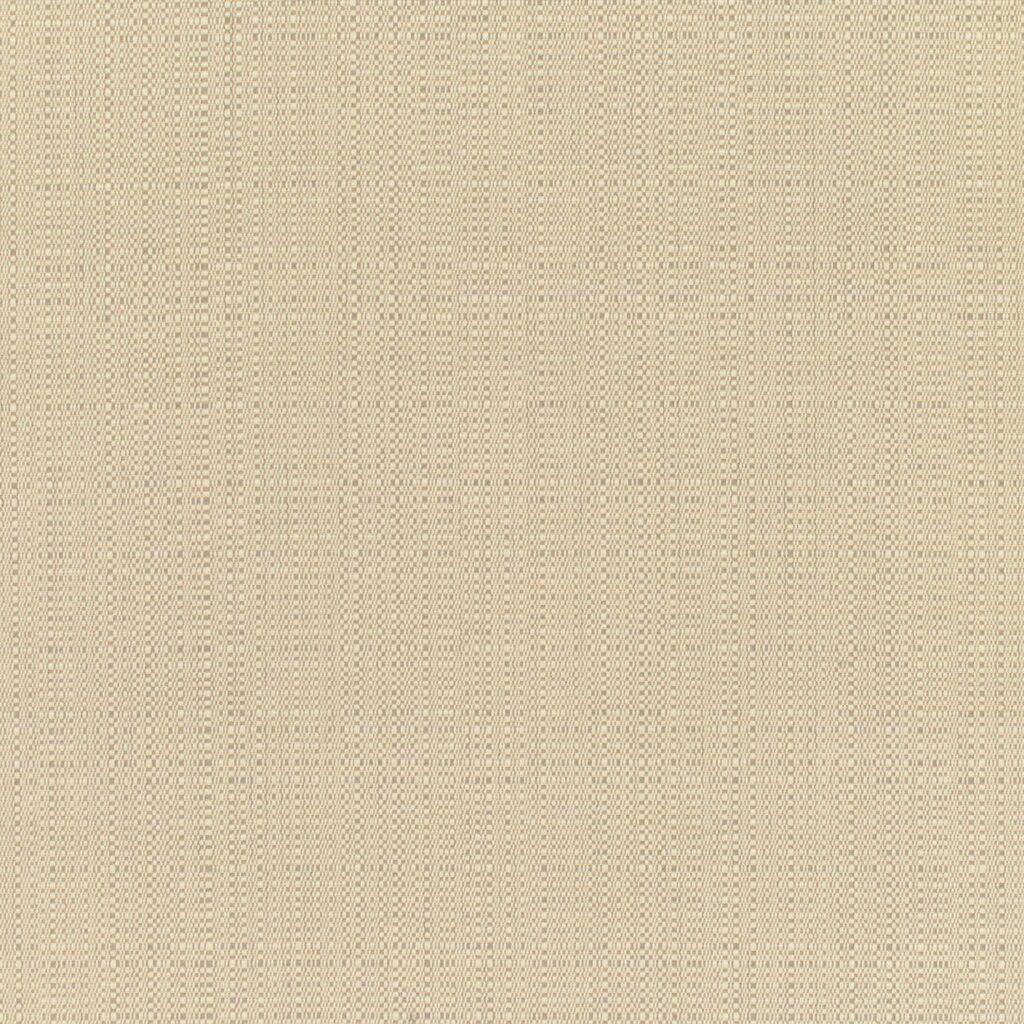Linen Champagne Fabrics